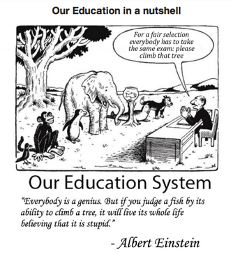 wpid-educationinanutshell-2013-11-19-14-36.png