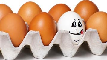 eggsmileinthecarton-2015-12-5-06-28.jpg